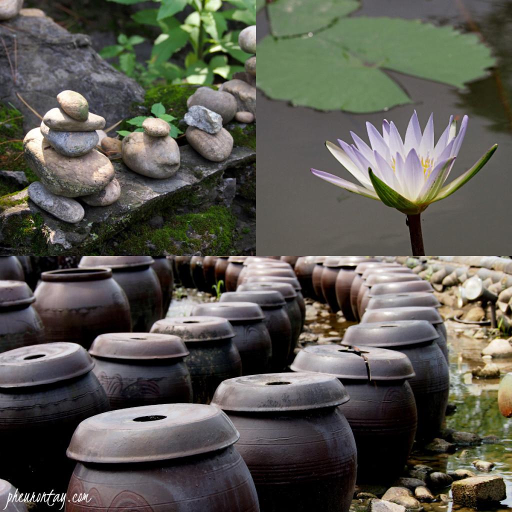 saemiwon lotus dumulmeori