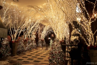 christmas at imperial palace seoul