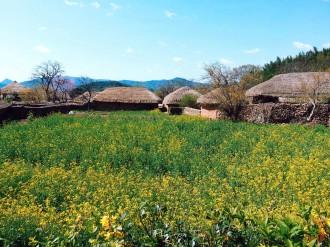 Spring at Naganeupseong, Suncheon