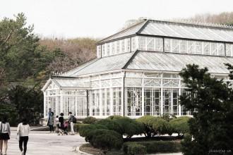 changgyeonggung great glasshouse