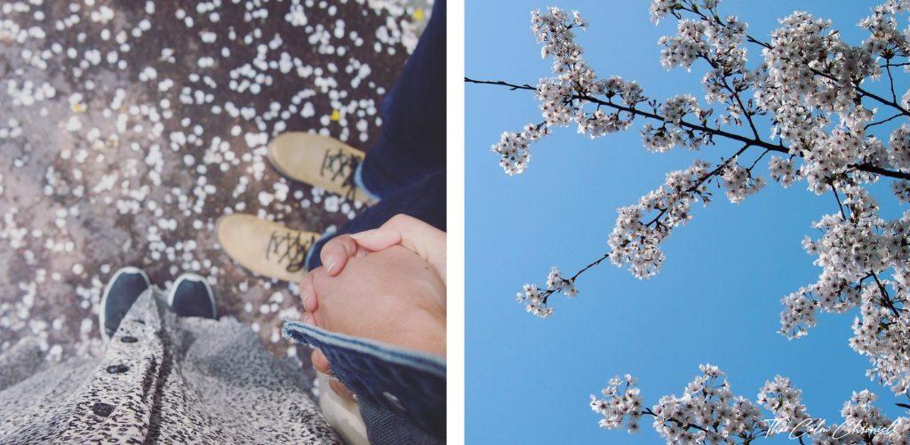 Namsan Park Spring